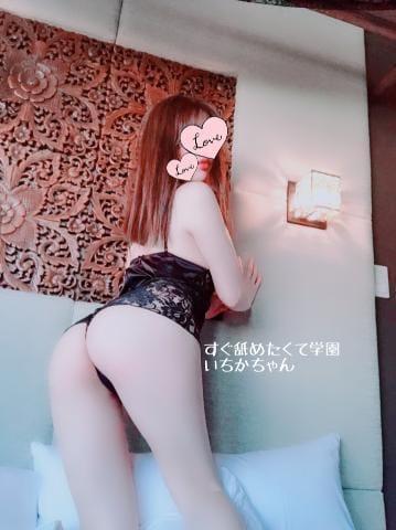 「じたく(^ω^)」10/28(10/28) 18:43   いちかの写メ・風俗動画