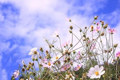 「こんにちは」11/11(11/11) 14:36 | ユラの写メ・風俗動画