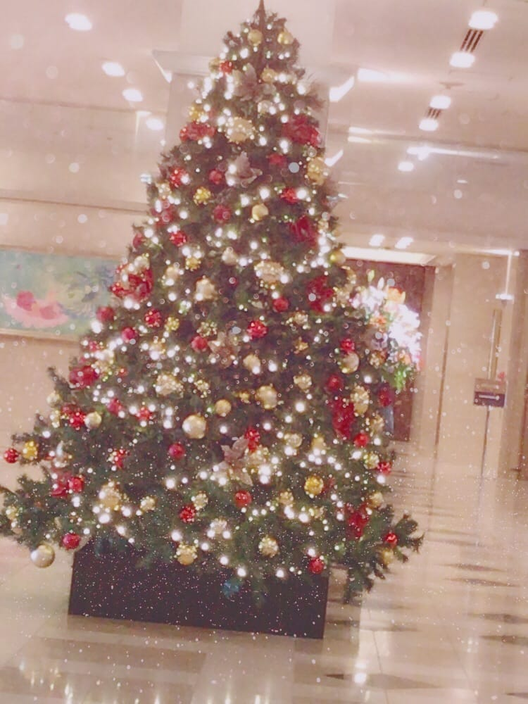 「こんにちは♪」11/17(11/17) 17:09 | かんな 即尺無料!!の写メ・風俗動画