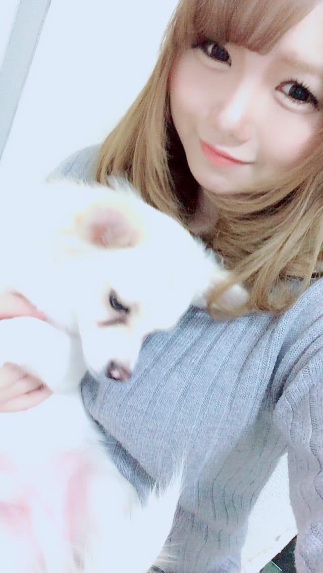 「お時間変更?」11/19(11/19) 23:52 | アリスの写メ・風俗動画