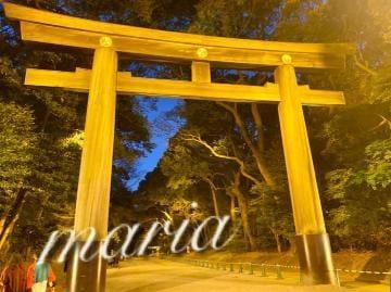 「?初詣?」01/09(01/09) 09:38   逢沢まりあの写メ・風俗動画