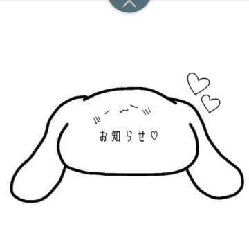 「1月後半の出勤予定」01/15(01/15) 01:29 | 尚見の写メ・風俗動画
