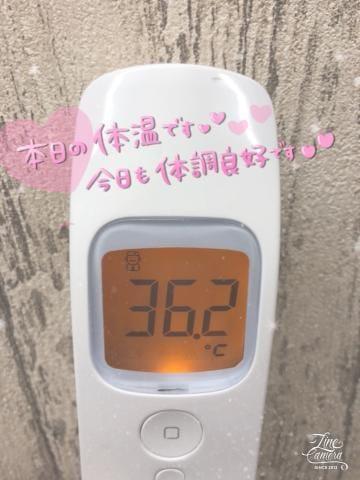 「[今日の私の体温]:フォトギャラリー」01/16(01/16) 14:50 | ふうかの写メ・風俗動画