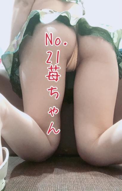 「No.21苺でやんす」01/19(01/19) 15:04 | 苺の写メ・風俗動画