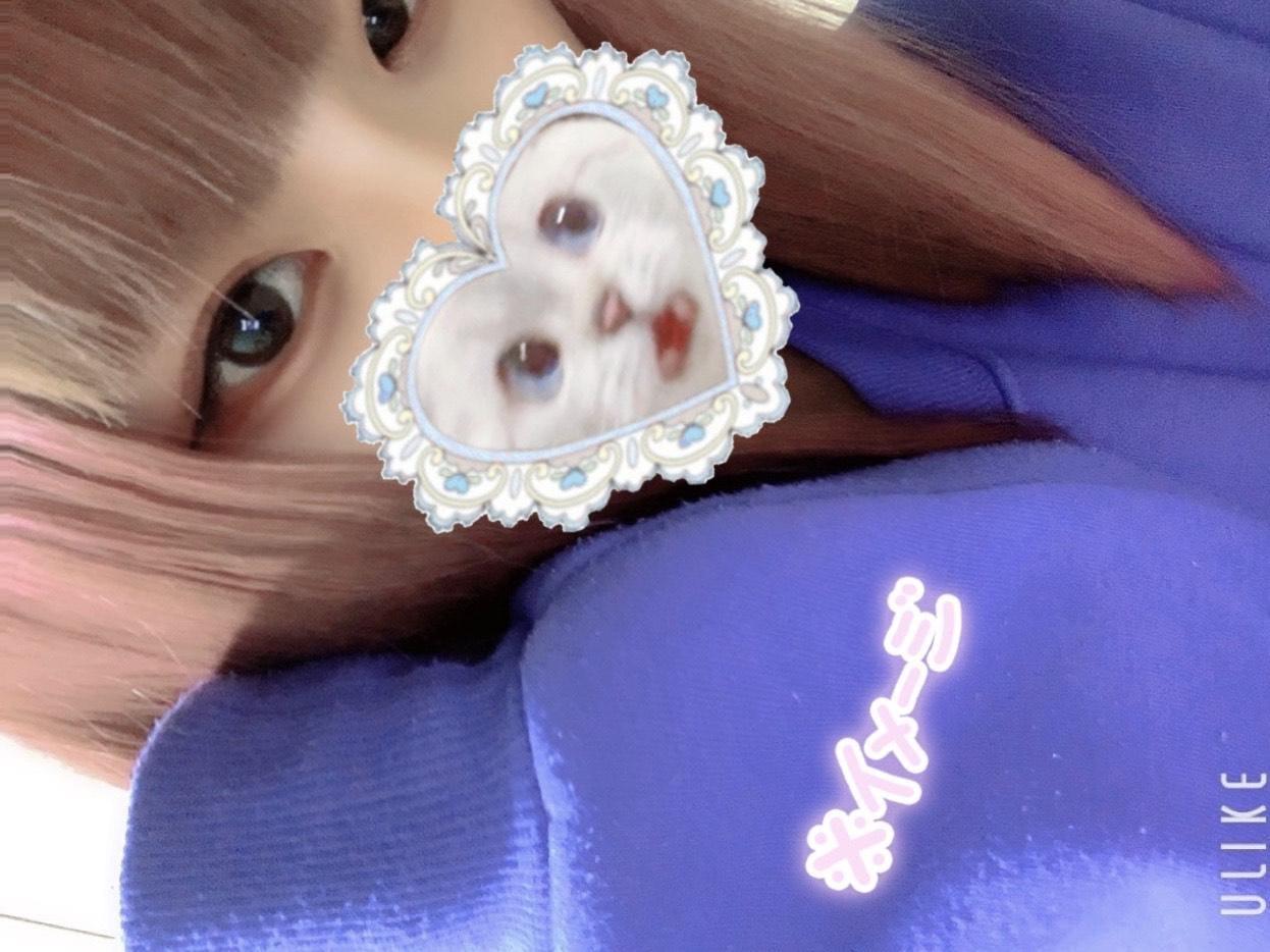 「出勤してます」01/19(01/19) 22:52 | 兎愛(とあ)の写メ・風俗動画