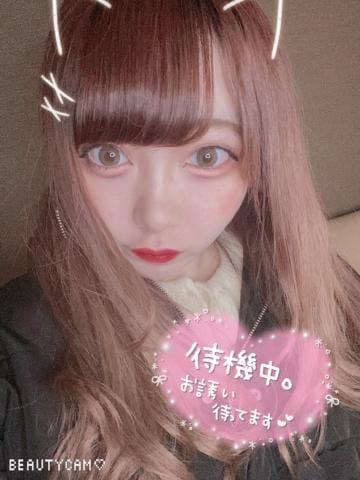 「ねこ」01/19(01/19) 23:24 | せぴあの写メ・風俗動画
