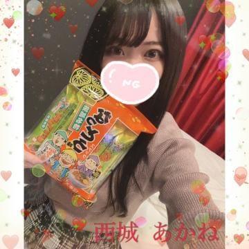 「「こっちのもの」」01/21(01/21) 04:04 | 西城 あかねの写メ・風俗動画