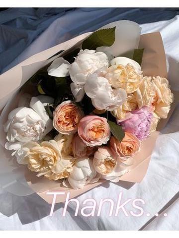 「お礼?」02/18(02/18) 15:01 | もねの写メ・風俗動画