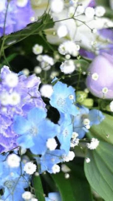 「お知らせ」02/19(02/19) 13:35 | まやの写メ・風俗動画