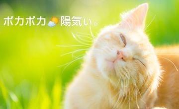 「お待ちしてます」02/23(02/23) 18:36 | なつきの写メ・風俗動画