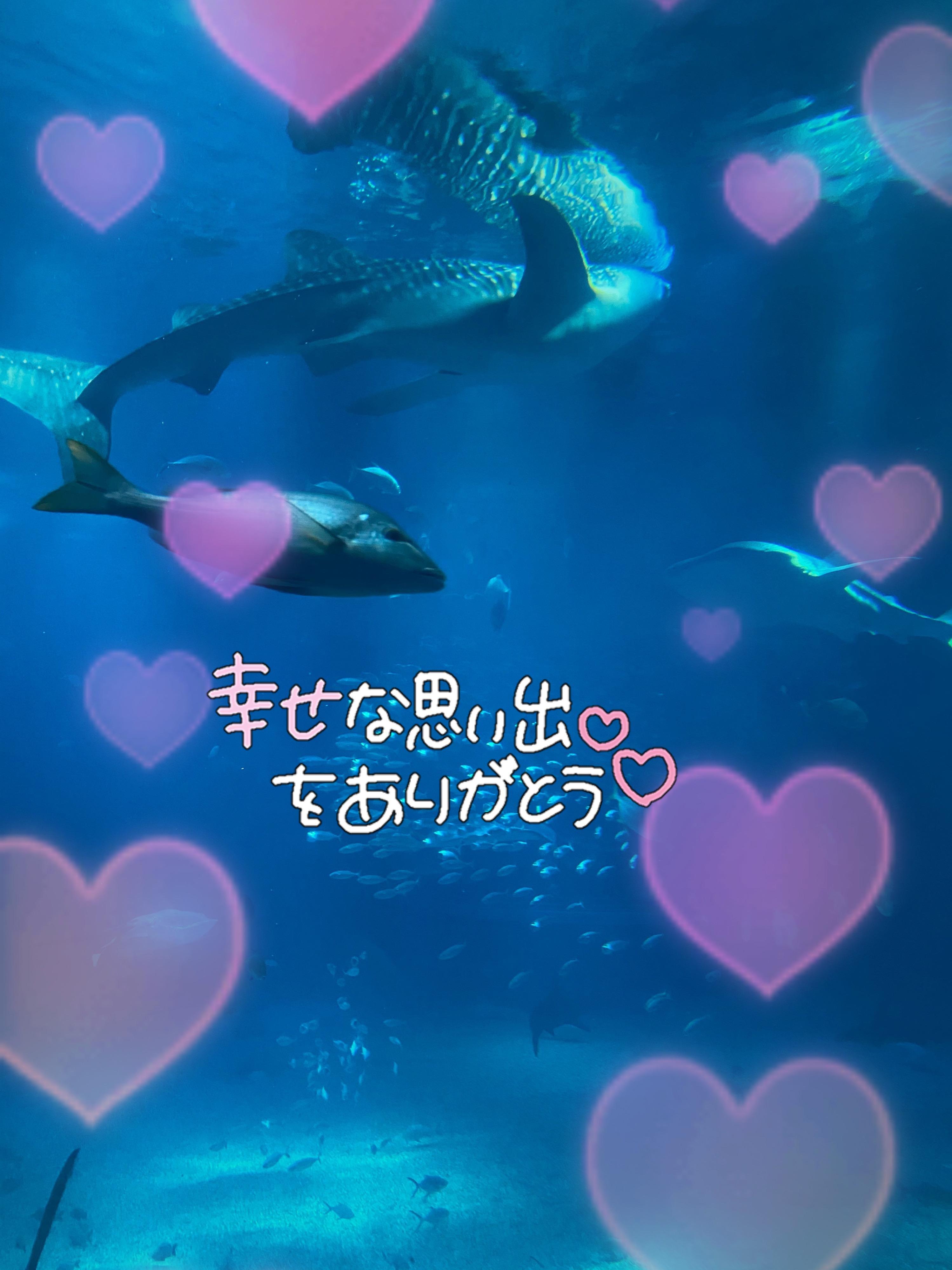 「3150❤️❤️」02/27(02/27) 23:56 | みさきの写メ・風俗動画
