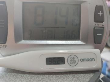 「今日の、体温」03/07(03/07) 13:44 | なおの写メ・風俗動画