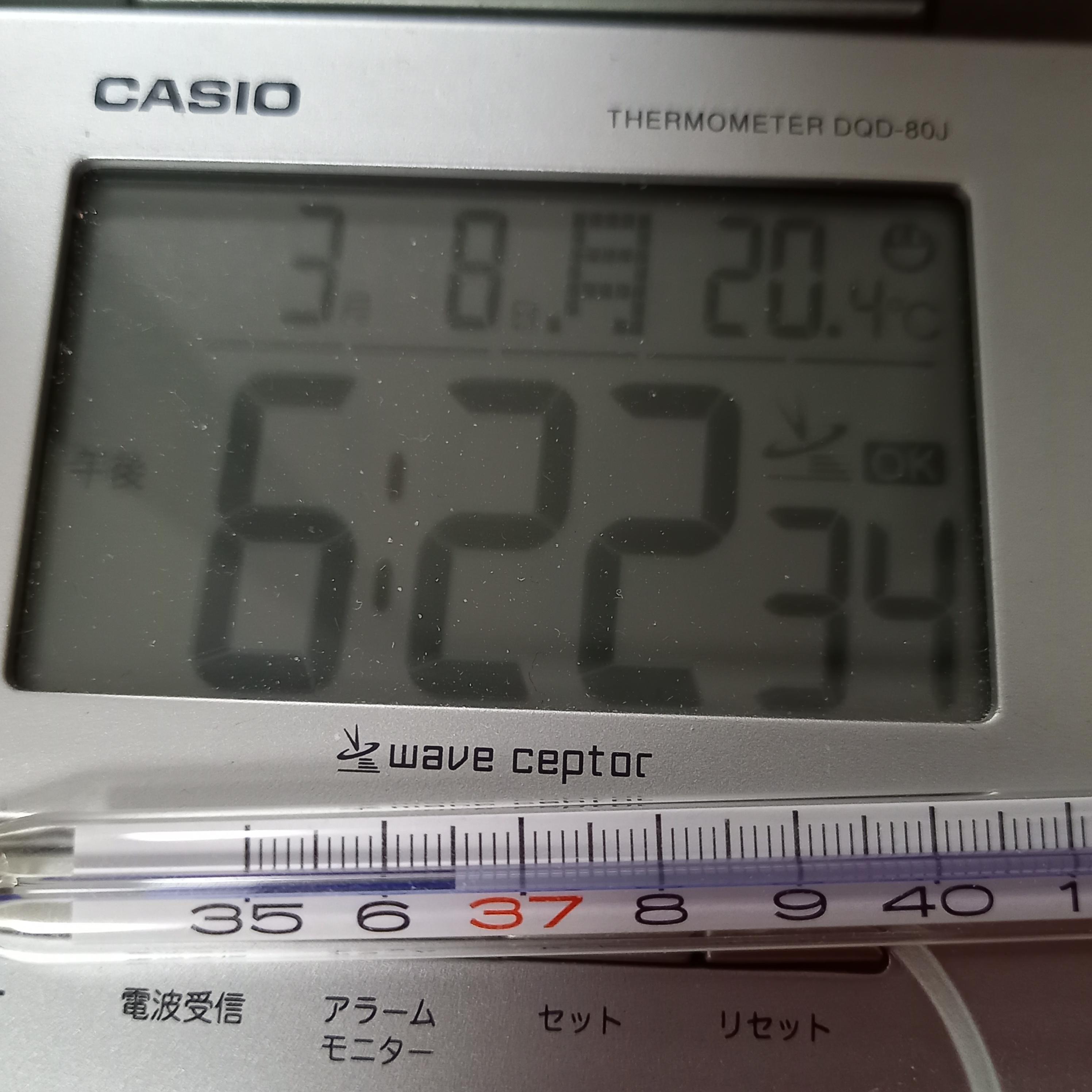 「フォトギャラリー」03/08(03/08) 18:23 | 江藤 彩の写メ・風俗動画