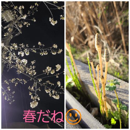 「見つけた!」03/19(03/19) 00:23   ユウキの写メ・風俗動画