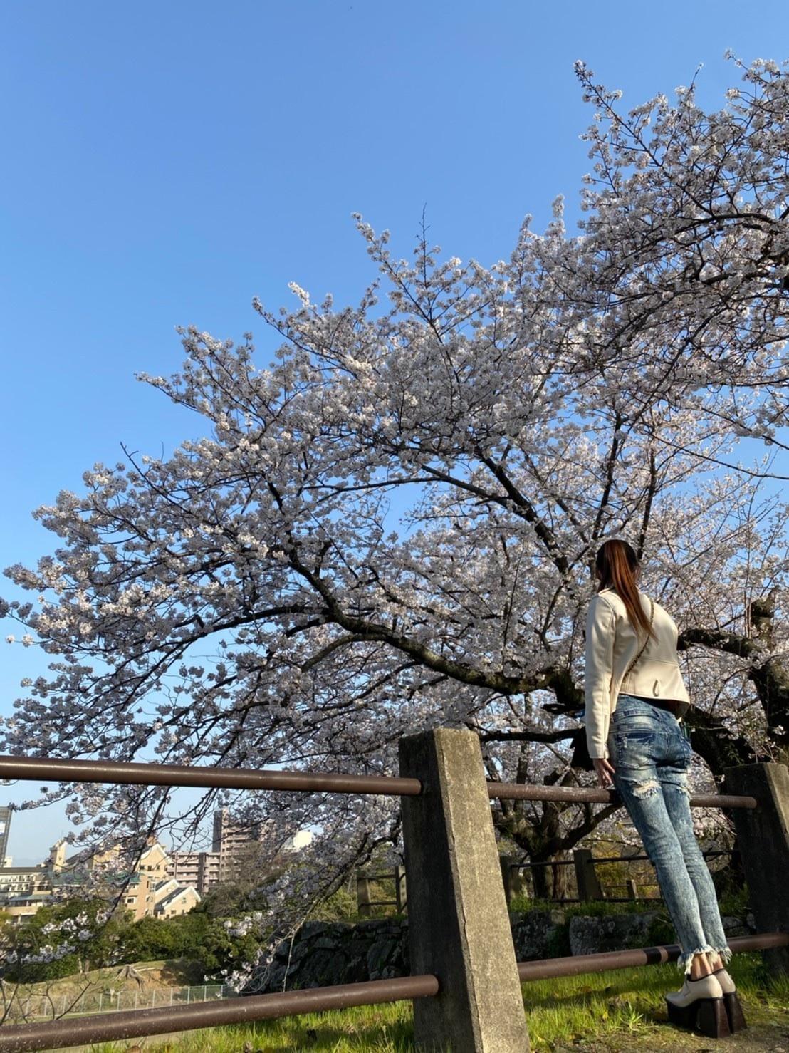 「本日出勤します✿ᵕ̈*」03/26(03/26) 16:45 | 亜梨沙~ありさ~の写メ・風俗動画