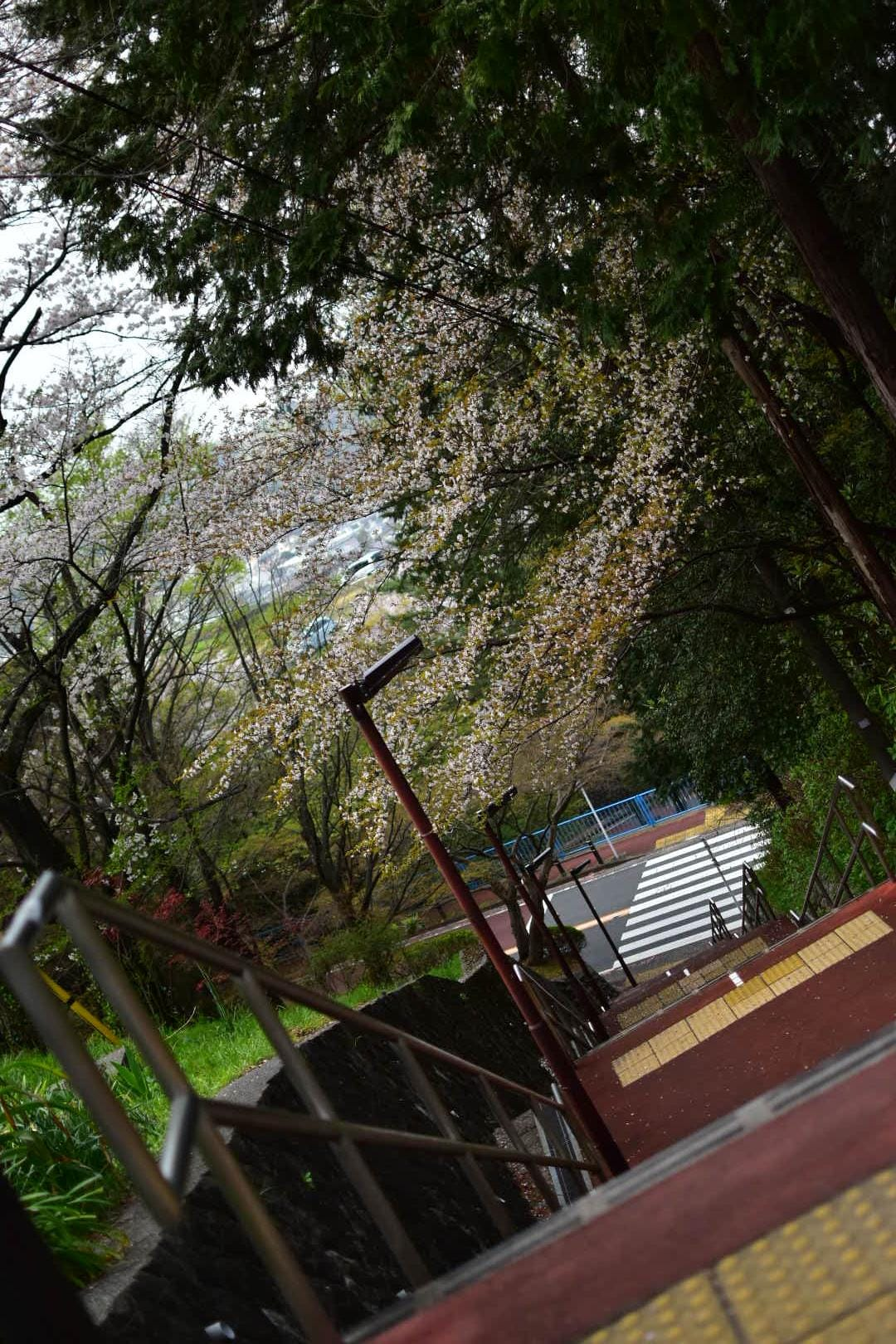 「おはよお〜」04/02(04/02) 11:07 | きょうかの写メ・風俗動画