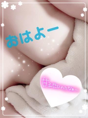 「おはよー!!」04/09(04/09) 11:58 | はく☆僕のペット急募❤の写メ・風俗動画