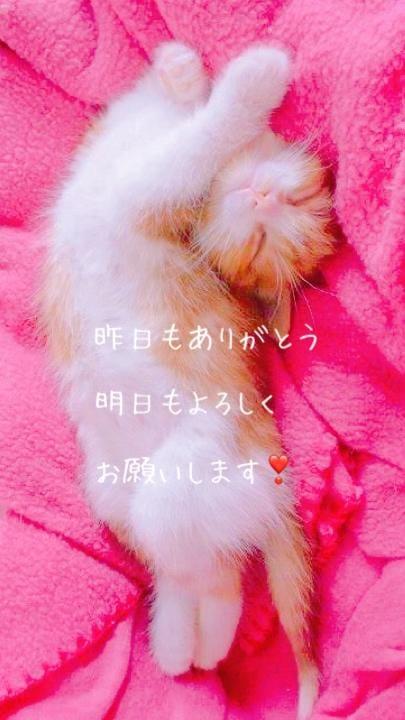 えれん|大塚・巣鴨風俗の最新写メ日記