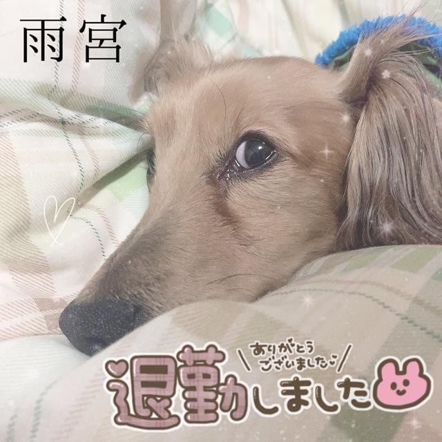 「たいきん」04/16(04/16) 03:22 | 雨宮(あめみや)の写メ・風俗動画