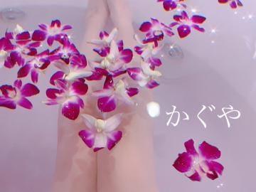 「お休み(´・ω・`)」04/18(04/18) 11:48 | かぐやちゃんの写メ・風俗動画
