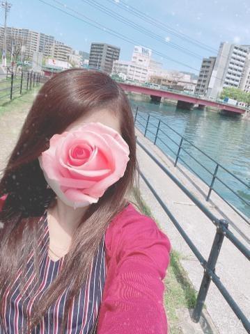 「おやすみなさい?・:*」04/20(04/20) 00:32   (新人)かのんの写メ・風俗動画