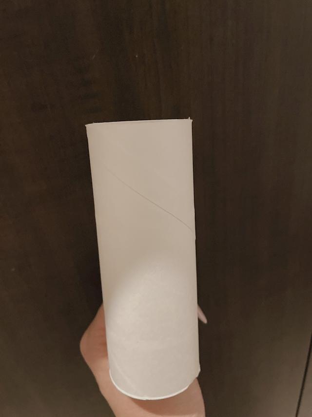 「トイレットペーパーの芯チャレンジ」06/11(06/11) 01:12 | そらの写メ