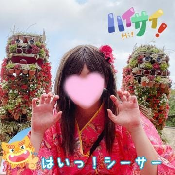 すみれCA|札幌・すすきのヘルスの最新写メ日記