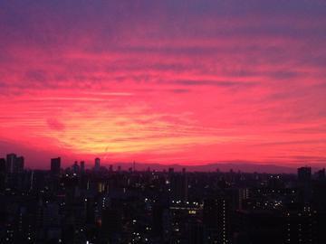 「夜だぁ♡」01/09(01/09) 18:14 | あいかの写メ・風俗動画