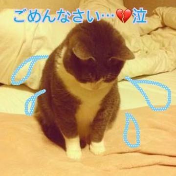 「ごめんなさい!」01/10(01/10) 02:29 | あいかの写メ・風俗動画