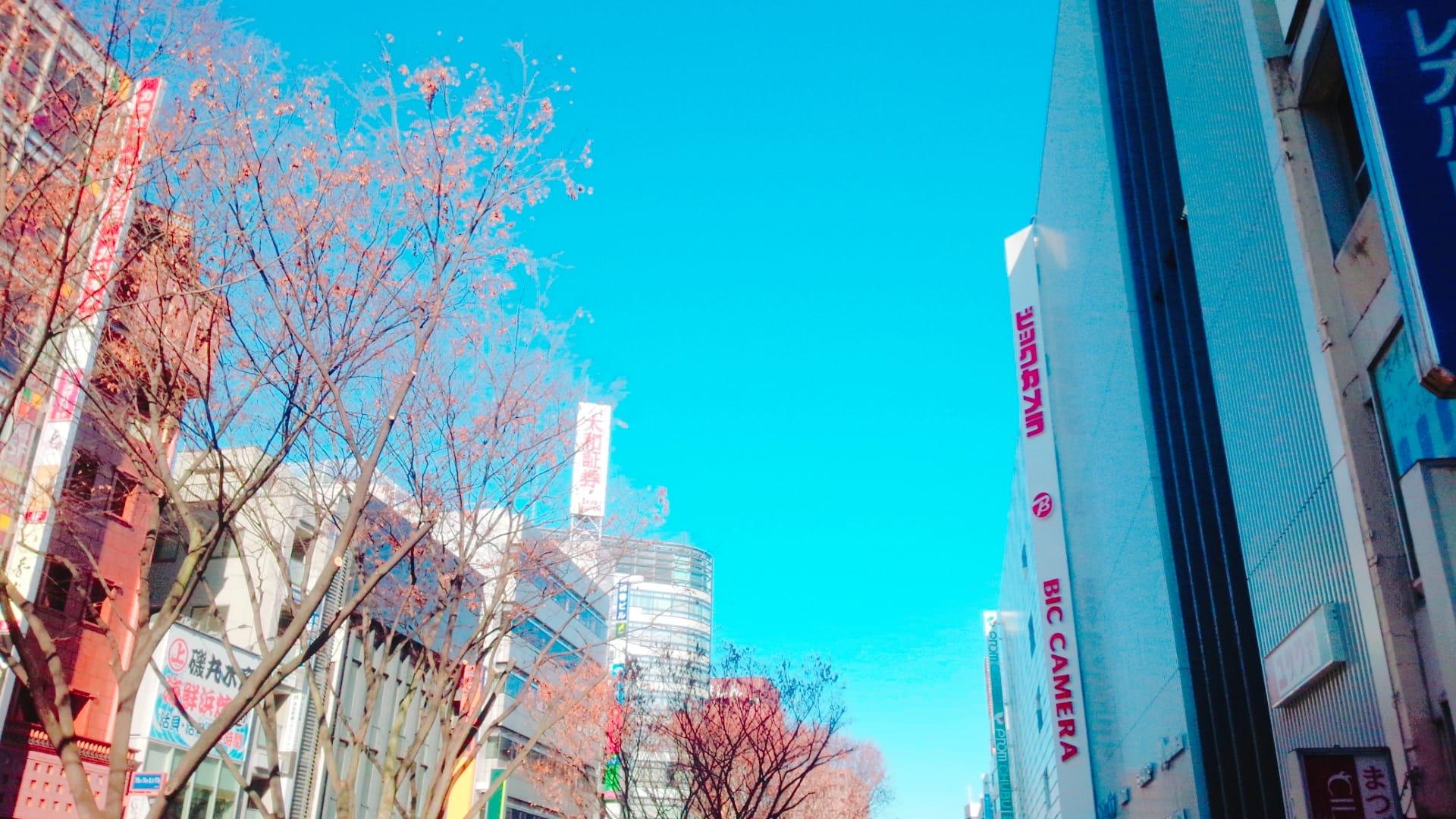 「出勤しました☺」01/10(01/10) 12:20 | はなの写メ・風俗動画