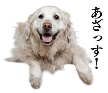 ゆうか|上野・浅草ヘルスの最新写メ日記
