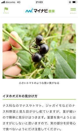 「懐かしい…」08/01(日) 21:23   片瀬 しのぶの写メ日記