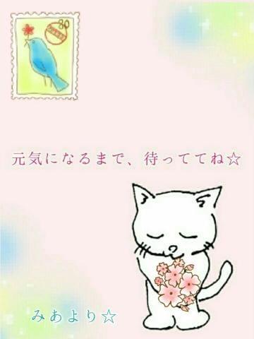 「こんばんは」01/19(01/19) 21:16 | 松岡 美杏の写メ・風俗動画