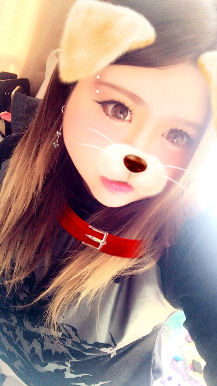 「こんばんわん」01/21(01/21) 23:37 | みほの写メ・風俗動画