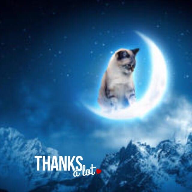「お礼です」01/22(01/22) 00:14 | さくらの写メ・風俗動画
