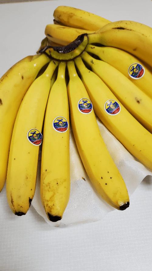 「バナナ祭り〜」09/18(土) 20:06 | シイナの写メ日記