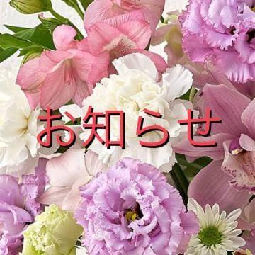 「No.37」09/19(日) 11:52 | 南の写メ日記