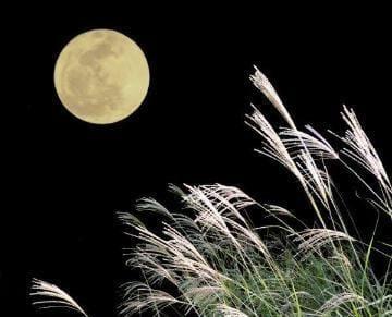 「中秋の名月」09/21(火) 18:15 | さつきの写メ日記