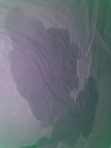 「なにする~」10/02(土) 15:43 | 山岡りえの写メ日記