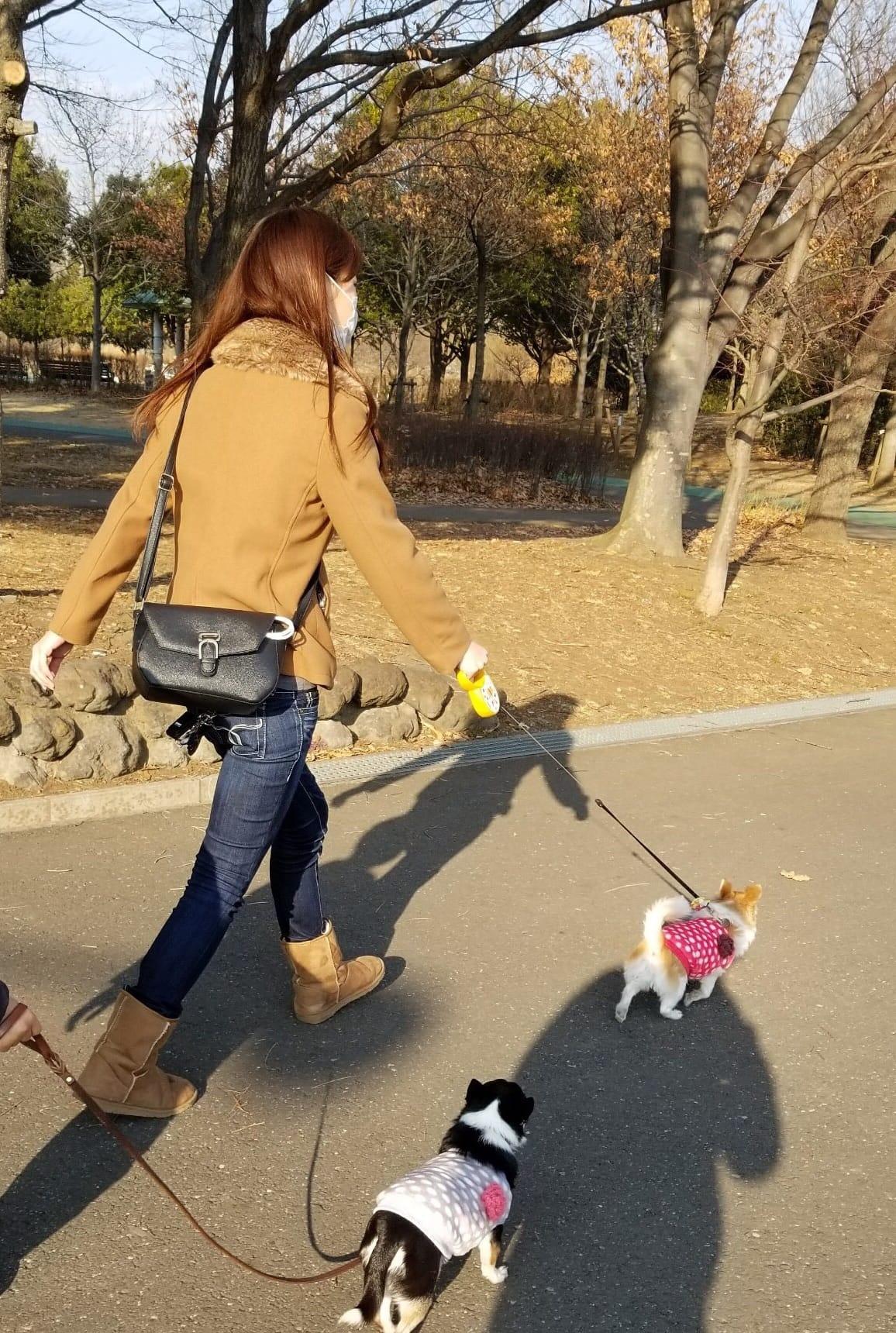 「お散歩だいっ!」02/12(02/12) 17:30   りこの写メ・風俗動画