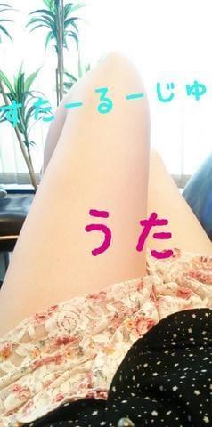 「´-`).。o○」02/19(02/19) 17:35   うた 甘えん坊!!の写メ・風俗動画