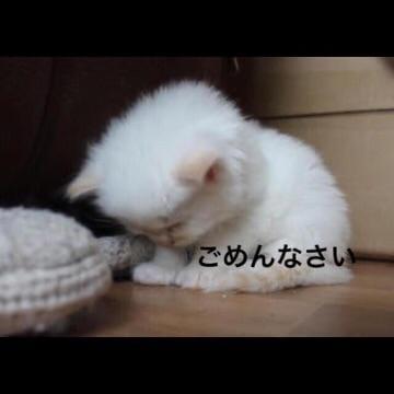 「お休みです。」02/24(02/24) 14:13   びび【アニメ声】の写メ・風俗動画