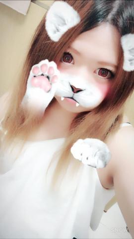 「こんばんわん」03/07(03/07) 01:16 | みほの写メ・風俗動画