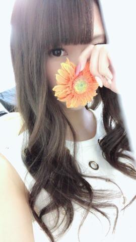 「明日?」03/11(03/11) 14:39   舞姫/まいひめの写メ・風俗動画