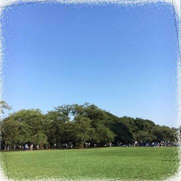 「今月唯一の土曜日出勤です。」11/11(11/11) 13:53 | みひろの写メ・風俗動画