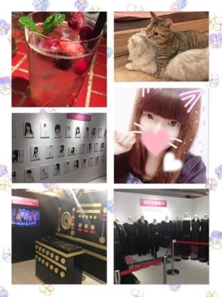 「出勤!」03/19(03/19) 20:37 | Sakura-さくら-の写メ・風俗動画