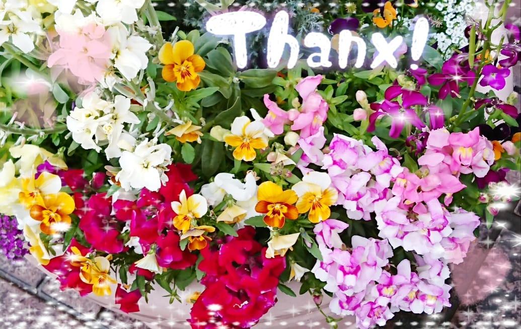 「有り難うございました(///∇///)」04/16(04/16) 21:09 | はすみの写メ・風俗動画