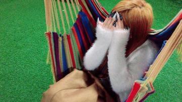 「こんばんわ♪」04/21(04/21) 17:48 | セリナの写メ・風俗動画