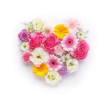 「先日♡感謝の気持ち。」04/23(04/23) 08:28 | 陽子-Youko-の写メ・風俗動画