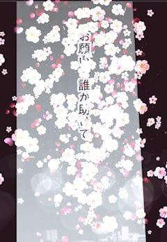 「出口が見えないのなら、いっその事」04/23(04/23) 17:16 | れあの写メ・風俗動画